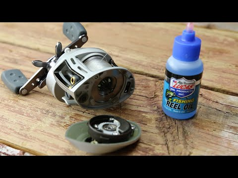 How To Oil a Casting Reel -- Bass Fishing Tutorial