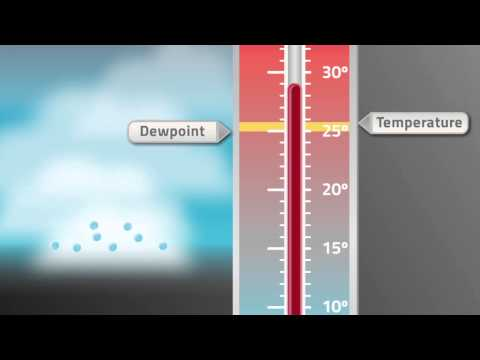 VFR into IMC: Temperature and Dewpoint