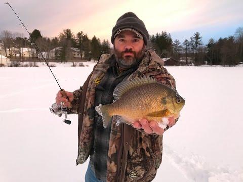 Ice fishing 2018 giant bluegill 4K video