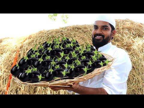 Brinjal Biryani for Orphans |Delicious Brinjal Biryani|Nawabs kitchen