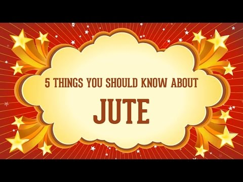 5 Things You Should Know About Jute