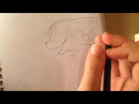 SpeedPaint (darkberry fox).   For a Ink berry fox