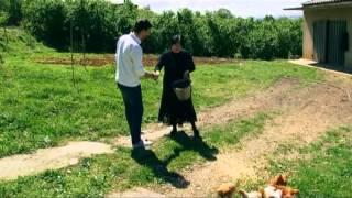 fermeris dgiuri 8 მეფრინველეობა