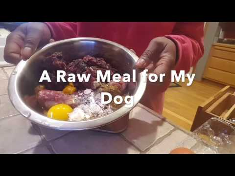 Making a Raw Meal for My Dog