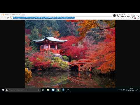 Cómo se transforma de formato jpg a bmp con GIMP