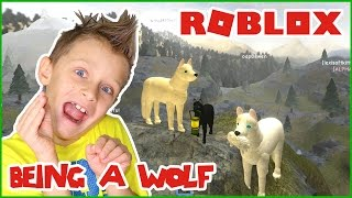 Roblox Wolves Life 3 Vs Horse World Which Is Better Roblox Wolves Life 2 3 5 Fakers Hd