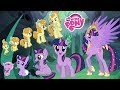 Download My Little Pony GROWING UP Compilation ✅ All Characters MLP | Top Stars In Mp4 3Gp Full HD Video