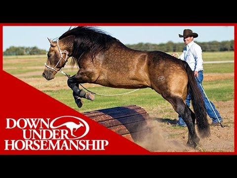 Clinton Anderson: Obstacle Course Training at the Ranch Rally - Downunder Horsemanship