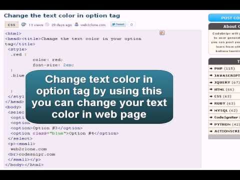 CSS Tutorial : CSS change the text color in option tag