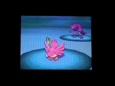 How to Get ZORUA & ZOROARK on Pokémon BLACK & WHITE! (English)