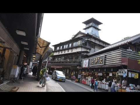Top10 Recommended Hotels in Narita, Japan
