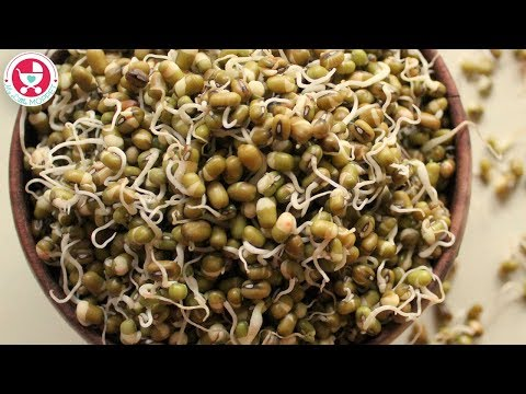 How to Sprout Mung Beans?