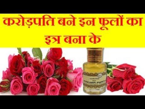 करोड़पति बने इन फूलों का इत्र बना के How to Make Perfume and earn in lakhs
