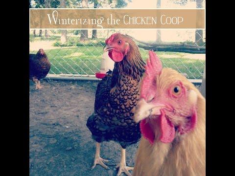 How We Winterize the Chicken Coop