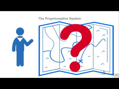 The Proprioceptive System