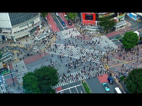 TWEWY Places in Real Life! (Shibuya, Tokyo, Japan)