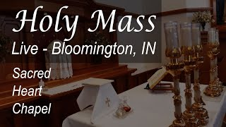 Live Mass & Rosary - 7 AM - Tuesday - Bloomington - June 30