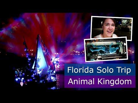 Day 5 | Animal Kingdom at night & Flight of Passage | Walt Disney World solo trip | Florida 2017