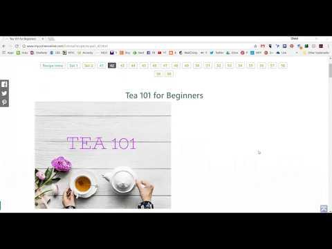 Tea 101 for Beginners