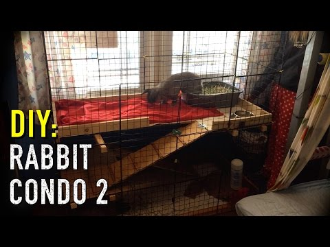 How to build a Rabbit Condo - Part 2