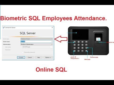 Biometric SQL Server Setup Step By Step