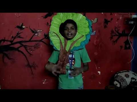 Save tree speech by Krushna