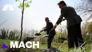 NASA Took Tree Seeds Into Space Nearly 50 Years Ago. Here's What Happened To Them.   Mach   NBC News