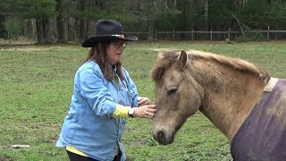 Jane Davis Riders Of The Sage ~ Equine Assisted Healing