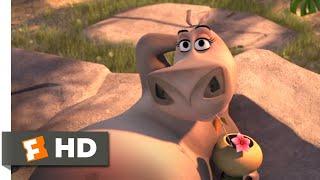 Madagascar: Escape 2 Africa (2008) - Moto Moto Likes You Scene (4/10) | Movieclips