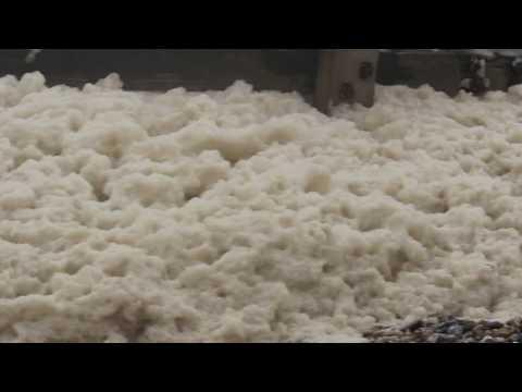 Sea Foam - What the hell is it???