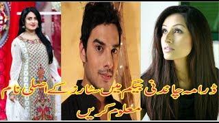 Chandni Begum Drama Stars Cast