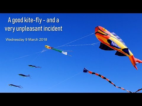 A good kite-fly  and a very unpleasant incident