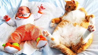 Baby and Cats Playing Together 😸 Funny Baby and Pets Moments