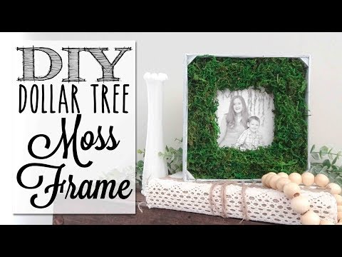 DIY Farmhouse Moss Picture Frame | Dollar Tree Craft