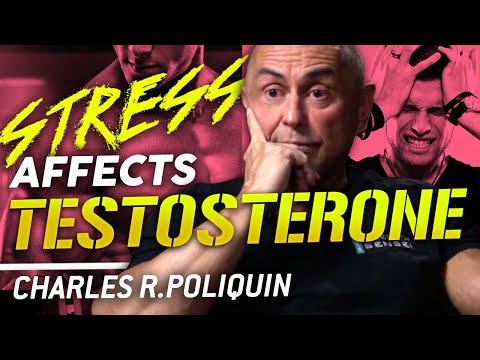 HOW STRESS DECREASES TESTOSTERONE LEVELS - Charles R. Poliquin