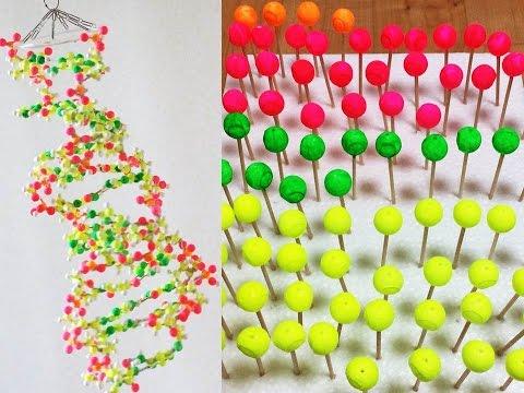 発泡スチロールと爪楊枝でDNA模型を作ってみた! How to make a DNA model using styrofoam balls and toothpicks
