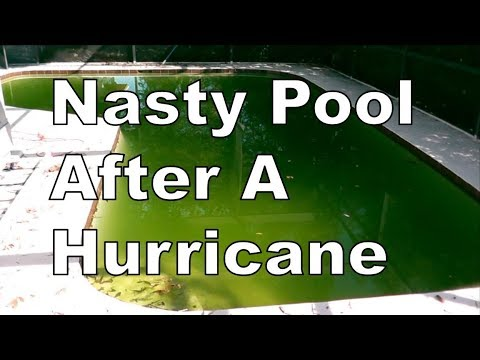 How To Clear Up Nasty Green Pool After A Hurricane | Perfect In Only 4 Days