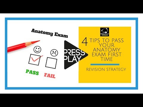 4 tips to pass your anatomy and physiology exam first time