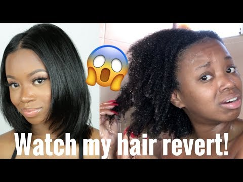 Did I Get Heat Damage? Watch My Hair Revert From Straight to Kinky Using Aphogee