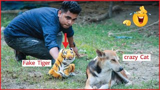 Fake Tiger Prank TRY TO NOT LAUGH CHALLENGE MUST WATCH NEW Funny Prank Videos 2020 !Part 6