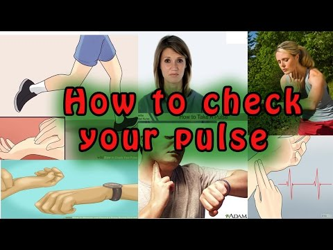 How to Check Your Pulse | Finding and Recording Your Pulse
