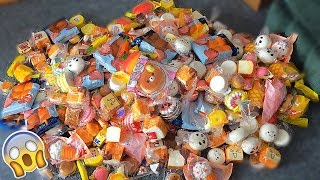 Download $3000 WORTH OF SQUISHIES!! LARGEST SQUISHY PACKAGES EVER!!! Video