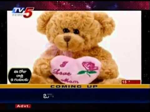 Telugu News-Special story About Teddy bear (TV5)
