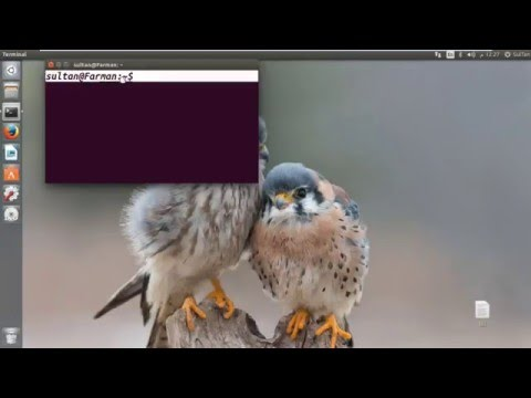 How to Change Terminal Font and Size in Ubuntu