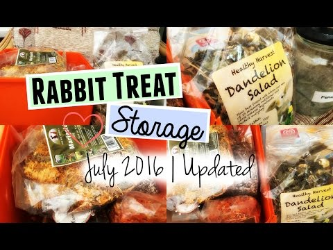 RABBIT TREAT STORAGE: JULY 2016 | RosieBunneh