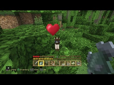 Minecraft PS4 - How To Tame An Ocelot (Lion Tamer Trophy) [0053]