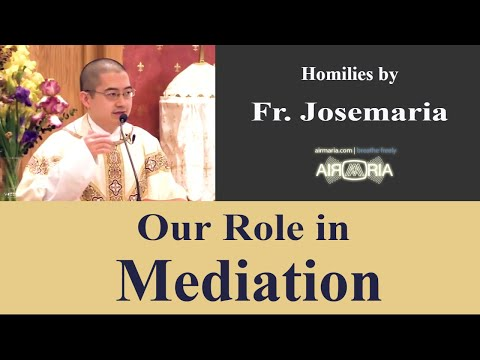 Our Role in Mediation - May 17 - Homily - Fr Josemaria