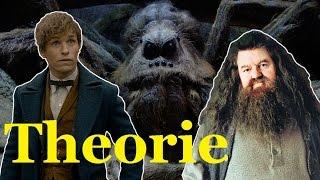 HAGRID bekam ARAGOG von NEWT SCAMANDER?! | Harry Potter Theorie