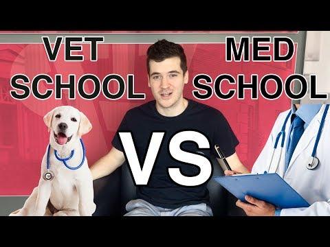 VET SCHOOL VS MED SCHOOL