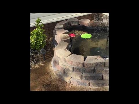 Half in ground half above ground 150 gallon koi fish pond